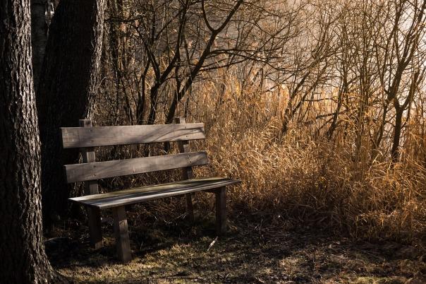bench-1190768_1280