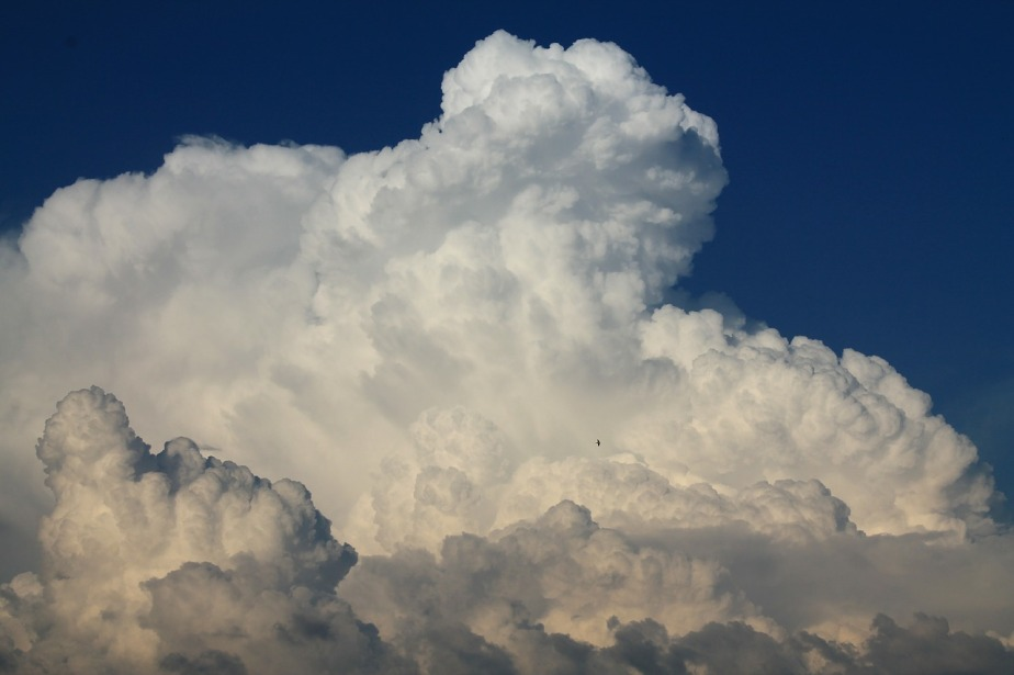 blue-sky-196230_1280